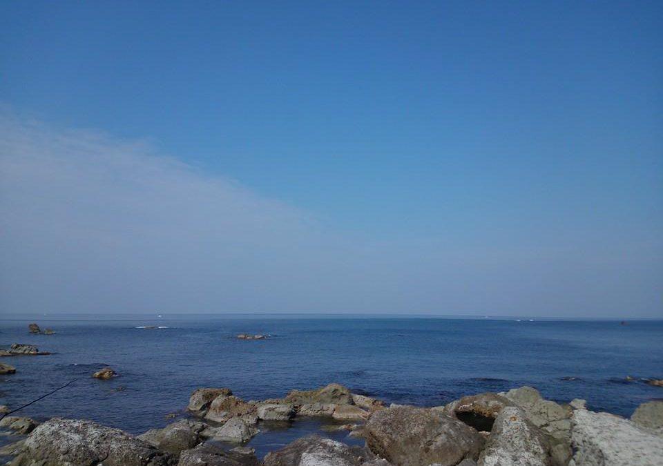 敷地前の海には釣り船も多数
